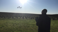 Drones and wine